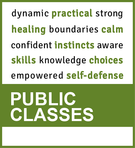 public self-defense classes